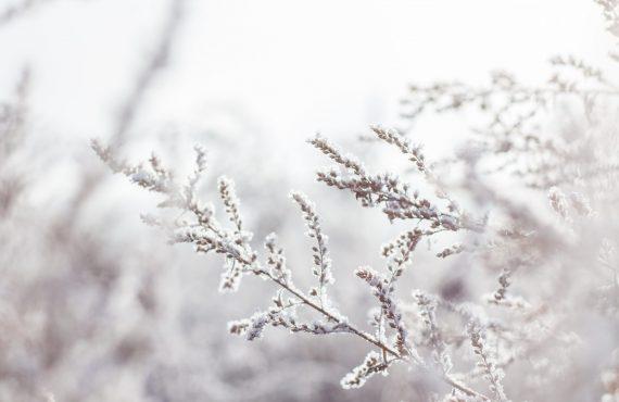 Lutter contre la fatigue hivernale