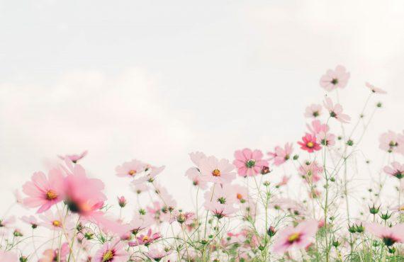 Quels sont les effets du passage à l'heure d'été sur notre corps ?